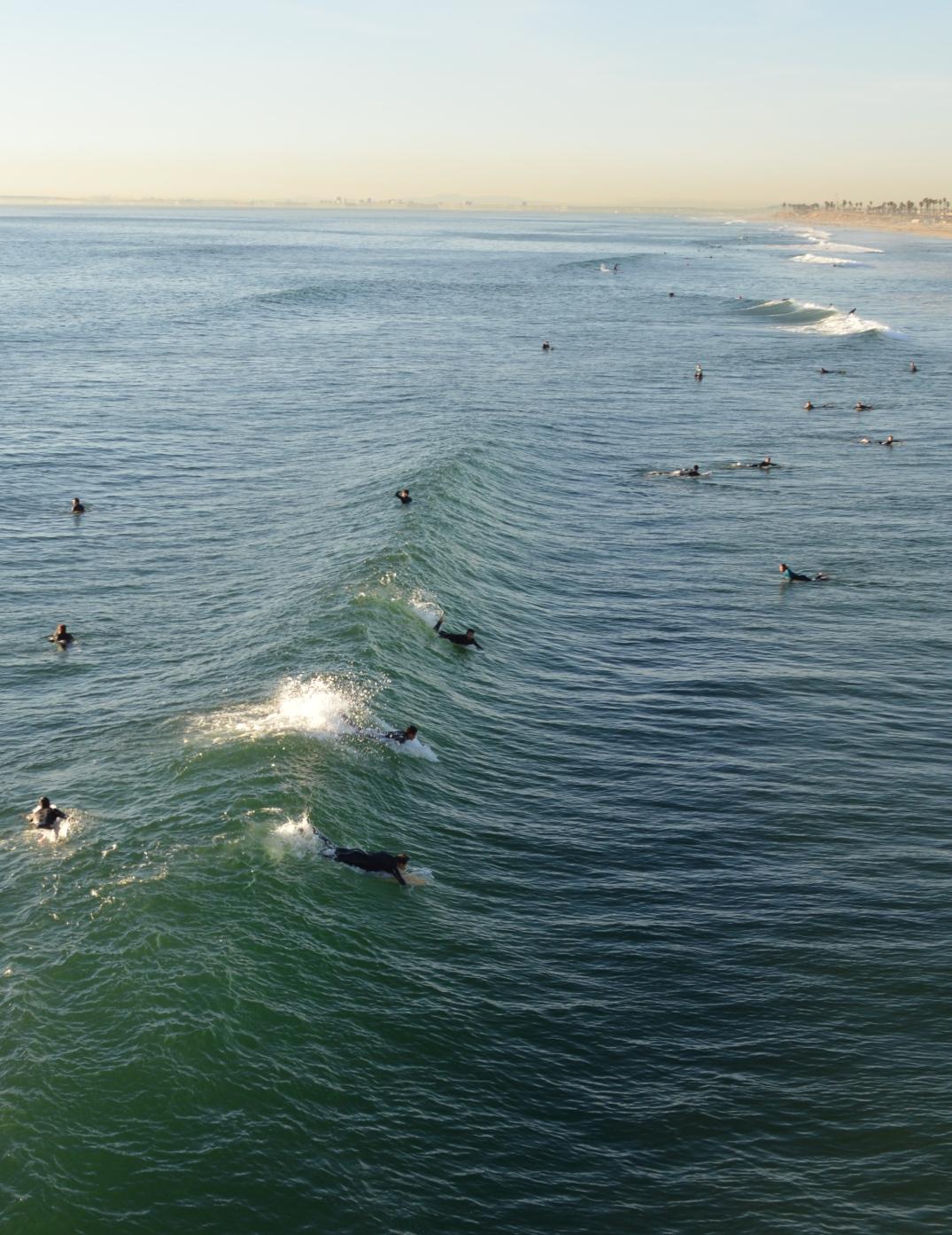 Surfers Shot 8 x 5