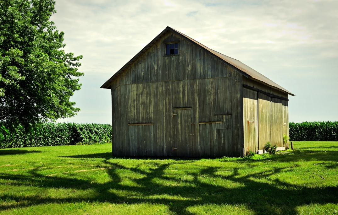 shadows and shed 2