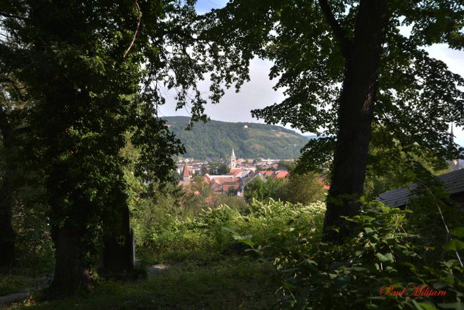 sighisoara seen from the hill