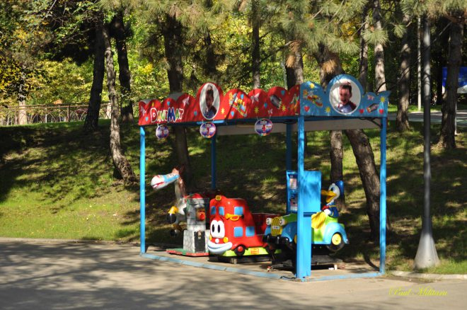 toys in park
