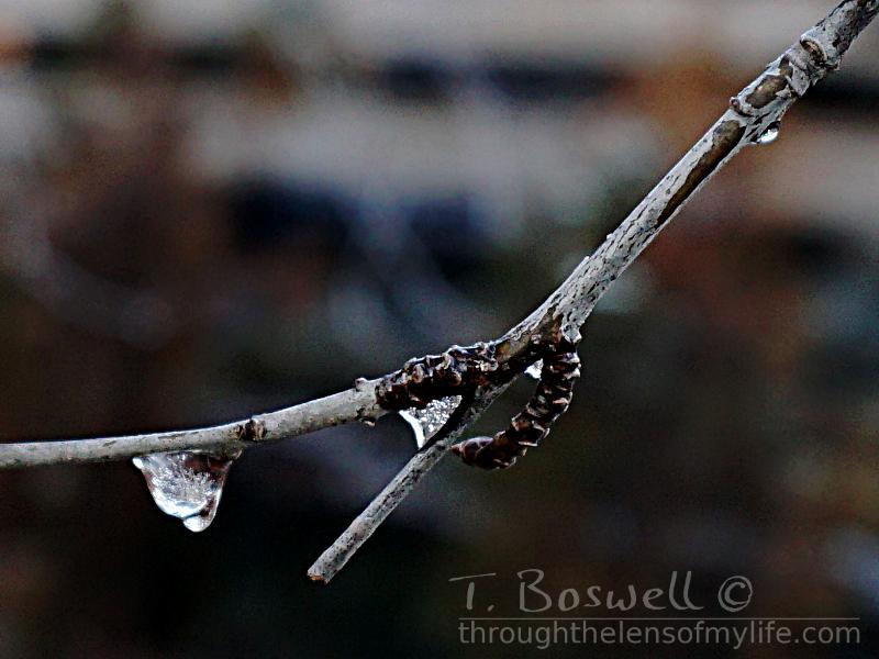 Frozen water drop.